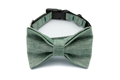 Chic Green Bow Tie Collar