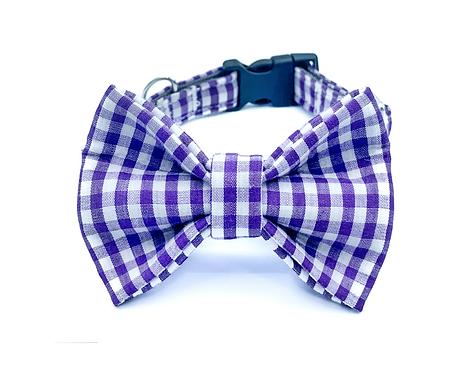 Purple Gingham Bow Tie Collar