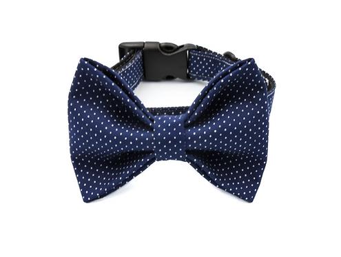 Sky Bow Tie Collar