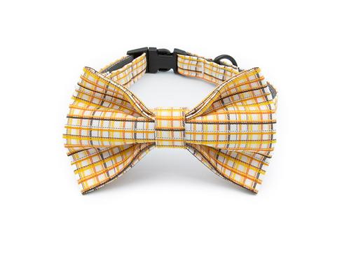 Too Good Bow Tie Collar