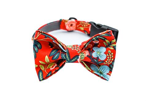 Garden Red Bow Tie Collar