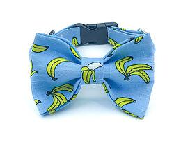 Banana Bow Tie Collar