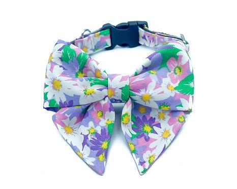 Purple Daisy Blair Bow Collar