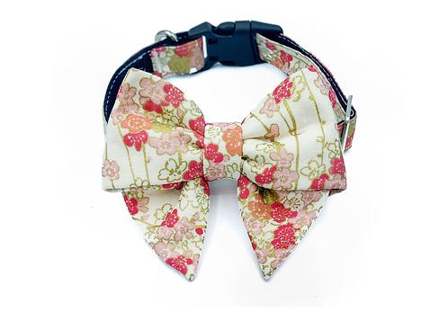 Blossom Blair Bow Collar