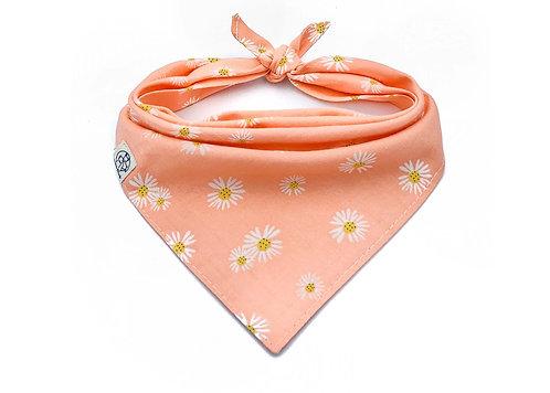 Peachy Daisy Bandana