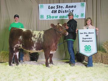 Cole Dodgson wins Lac Ste. Anne 4H Supreme Champion Steer & Supreme Champion Rate of Gain