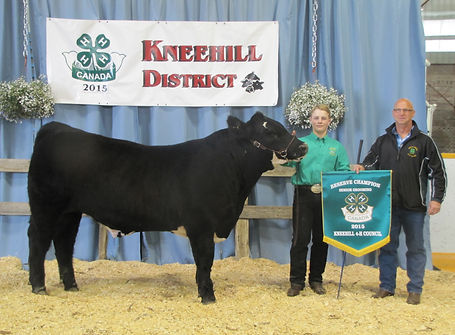 One and Only 4-H Steer