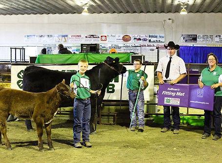 Amen Grand Champion 4-H Cow