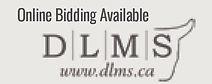 DLMS.jpg