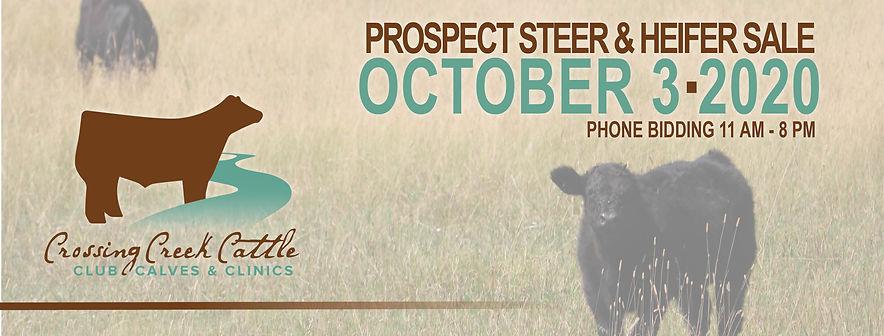 Crossing Creek Cattle August 2020 Facebo