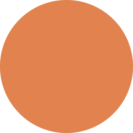 Orange ball.png