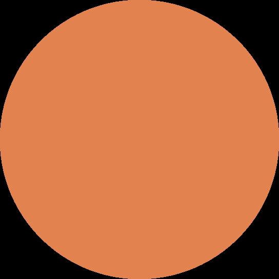 Orange ball.png