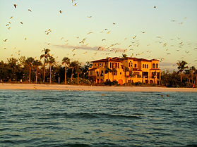 Naples Fishing Charters, Florida, House Hunting, Sightseeing Naples, Boat Tour