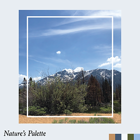 Natures Palette.png