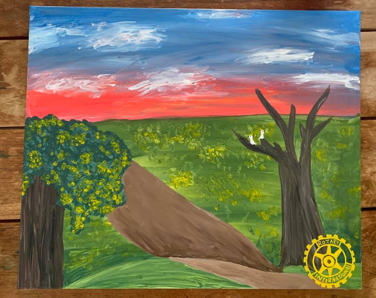 """#DiamondCreekMuralFestival Mural by Molly age 13 """"My mural is of the life surrounding the creek. Cockatoos reside in the dead gum trees and Australia's national flower, wattle, blooms everywhere. Little wild daisies are strewn across the landscape as a new day dawns over the horizon, bringing light and happiness with it."""" To create my mural I used the paint supplied by Veronica's Pantry and posca pen for the Rotary symbol."""