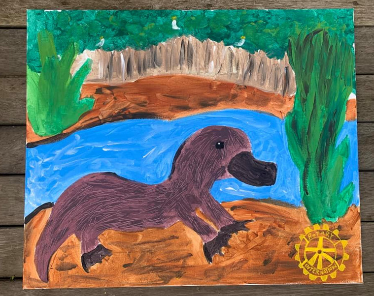 """#DiamondCreekMuralFestival Mural by Cobie age 11 """"My mural represents a very happy platypus living in our creek. I love going for walks, bike rides and scooter rides with my family, stopping along the track to try to spot a platypus! It also represents the beautiful environment we live in - our creek, the trees and the animal life."""" I used paints supplied by Veronica's Pantry and posca for the Rotary symbol."""