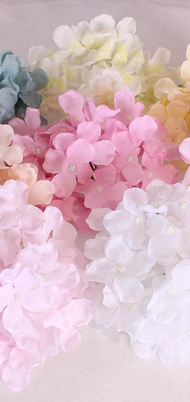 hydrangea colours.jpeg