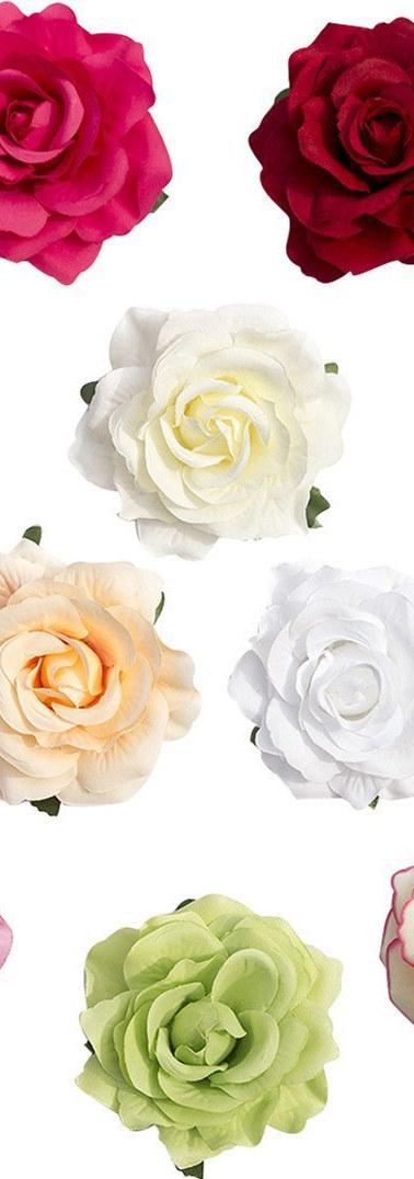 roses colours.jpg