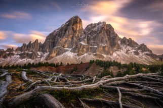 Roots of Dolomites