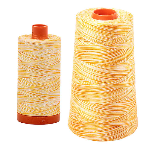 Aurifil Cotton Thread 50wt Variegated Limoni di Monterosso 4658