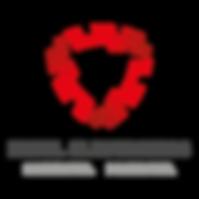 Exsel Electronics Logo Colour-01.png