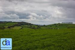 landscapes -  2013 dennisanthony ©16.jpg