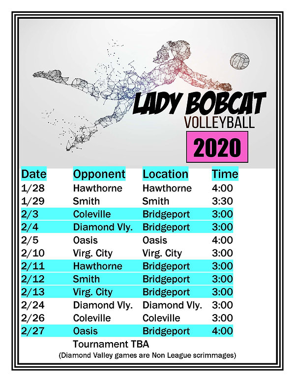 Volleyball 2020 Schedule.jpg