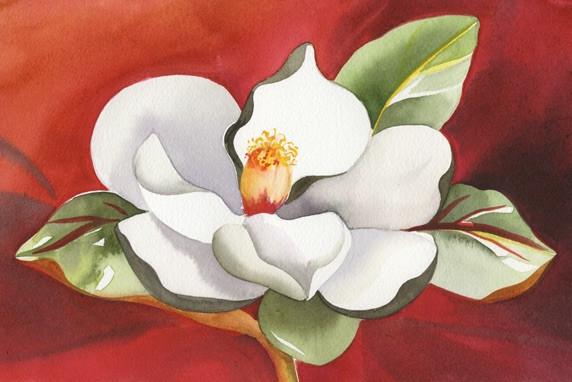 Magnolia in Bloom . SOLD