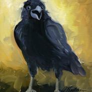 Raven Maniac SOLD