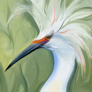 Snowy Egret  SOLD