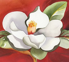 2172 Magnolia watercolor.jpg