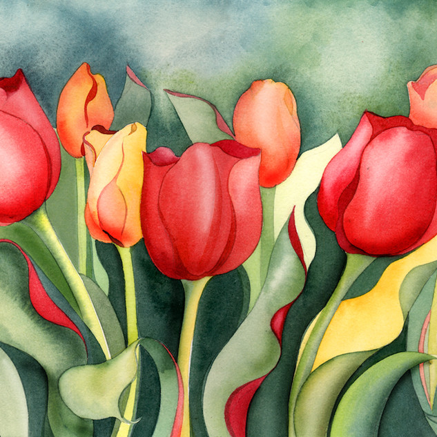 1562 Warm Red Tulips SOLD.