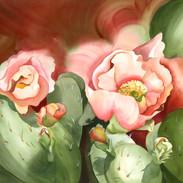 5039 Cactus in Bloom