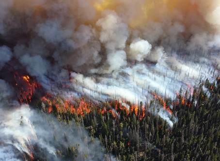 Drone Imagery Provides valuable insights from the 2017 & 2018 California Wildfires