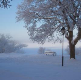 Frostig parkbänk