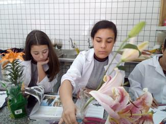 Aula no Laboratório com o 7° ano B