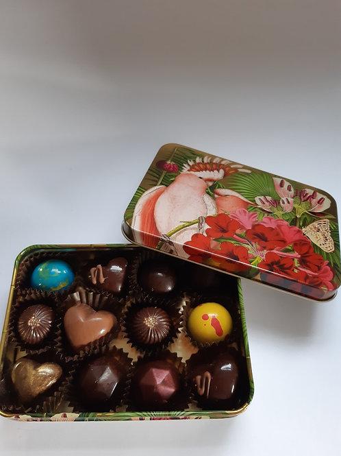 Tropical Birds Gift Tin with Chocolates