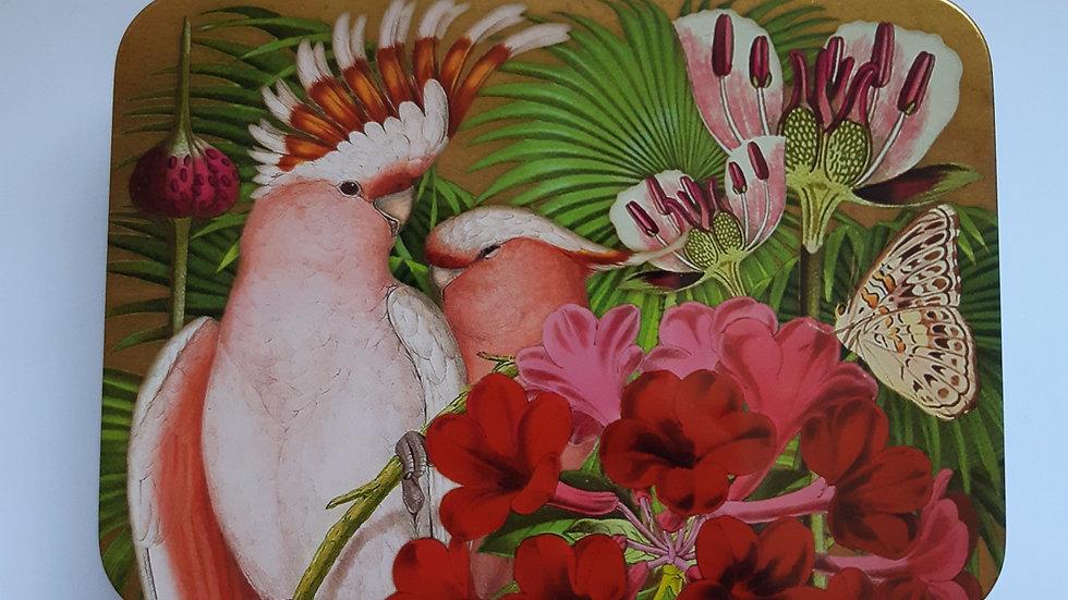 Tropical Bird Tin with 12 x handmade chocolates