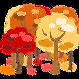 紅葉した森林.png