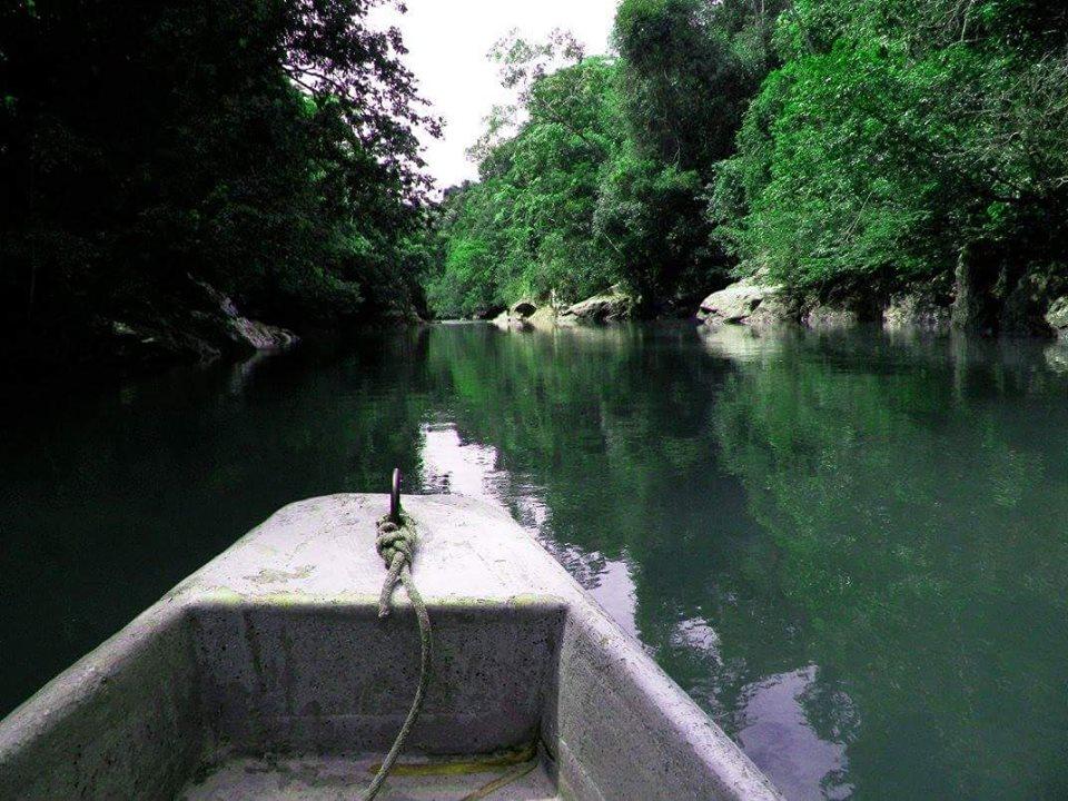 Navegando el rio la miel