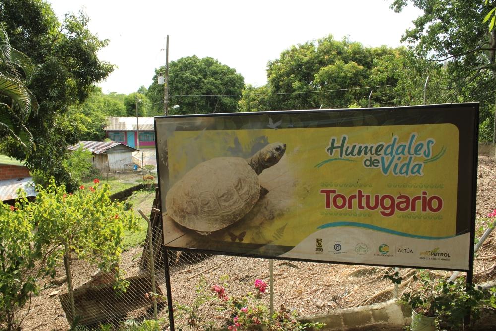 Tortugario