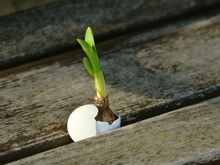 Hoffnung!