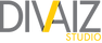 Divaiz Logo Design-1_edited.png