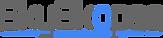 Skyskopes Logo (Large).png