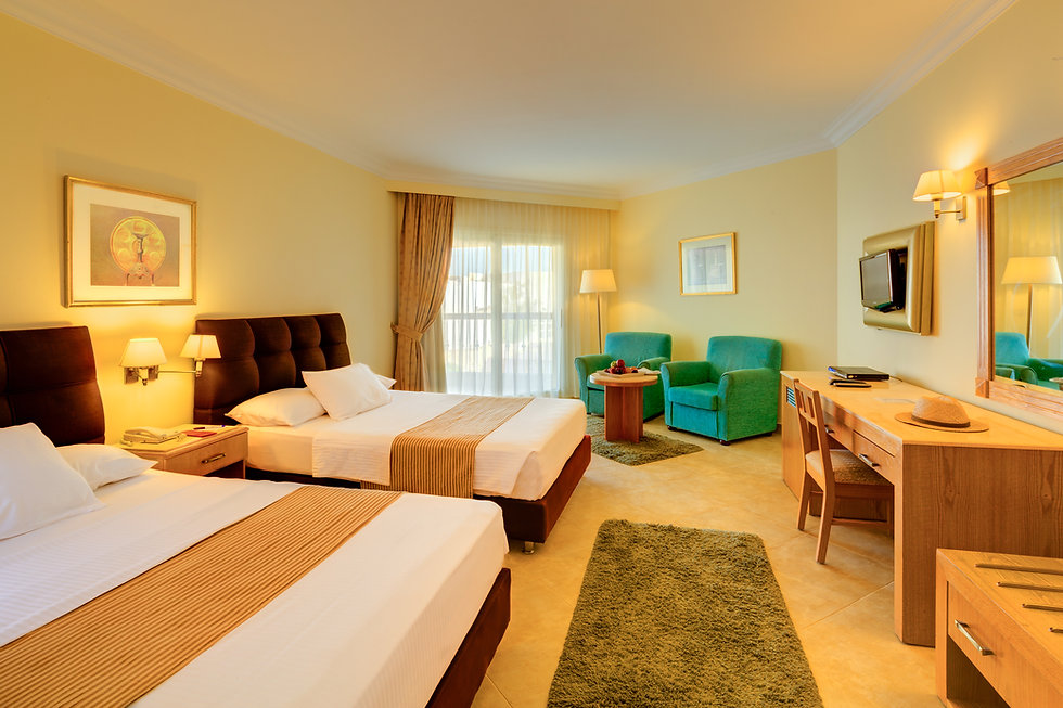 Deluxe Room Twin Bed.jpg