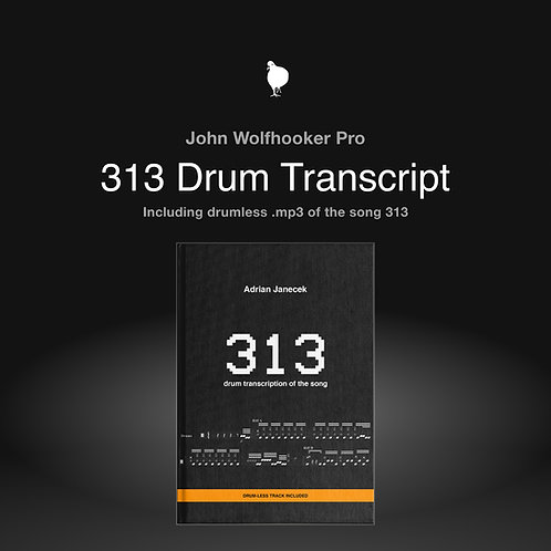 """313"" Song Drum Transcription + Drumless Track"