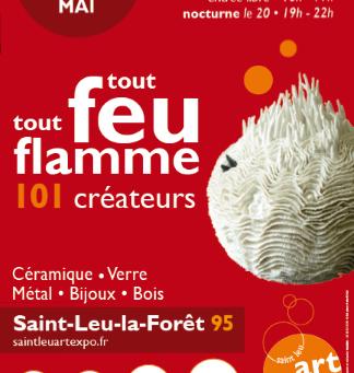 Salon Tout feu tout Flamme 2016