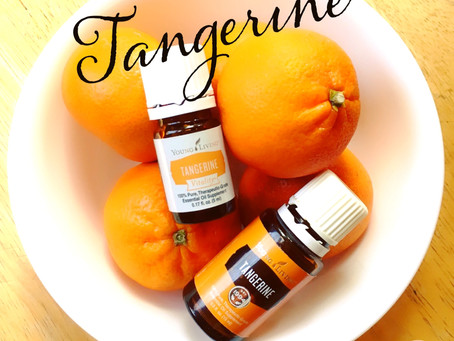 Tangerine Really Could be a Dream for YOU!