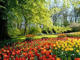 Como um Jardim