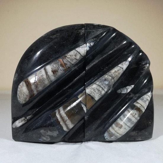 Polished Orthoceras Bookends 2.1kg